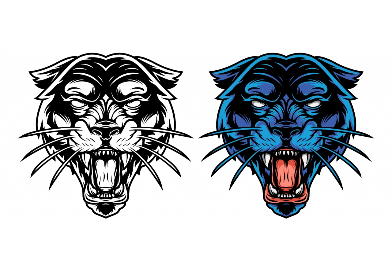 The old school style design of ferocious black panther head in color and monochrome versions on white background