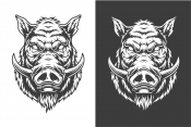 Two boars