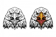 Vintage majestic eagle head in color and monochrome versions