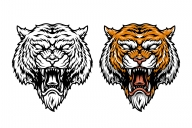 Vintage angry tiger head design in color and monochrome versions on white background