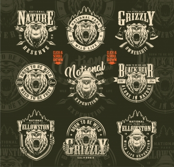 Vintage outdoor and wild life designs collection with ferocious and serious bear heads with and without safari hat, forest silhouette, crossed arrows and axes