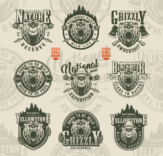 Vintage monochrome style outdoor labels set with angry and serious bear heads, crossed axes, arrows, forest silhouette on light background