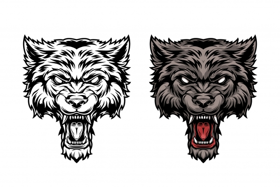Vintage design of ferocious angry wolf head in color and monochrome versions