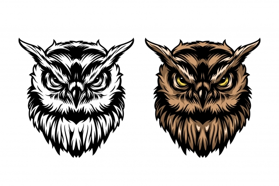 The old school style design of serious owl head in color and monochrome versions