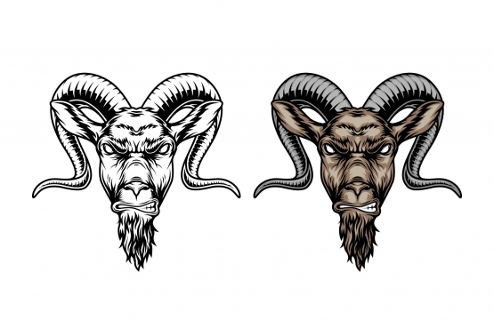 Vintage angry goat heads in color and monochrome versions on white background